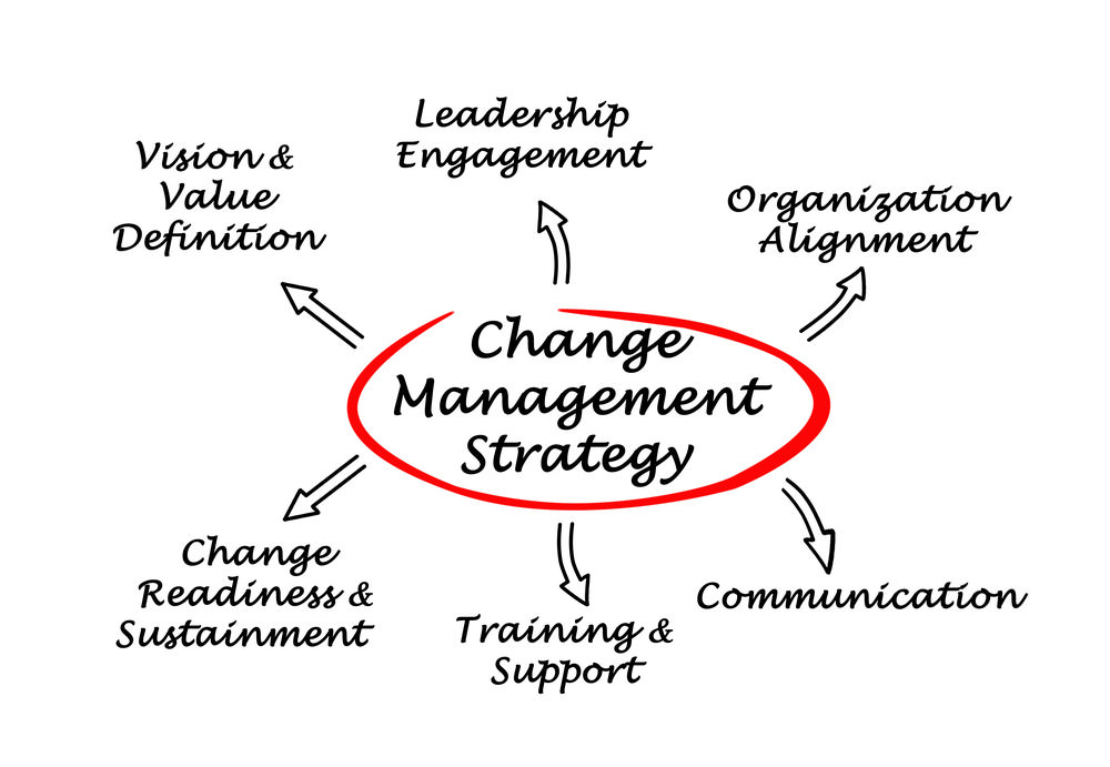 Change Management Strategy Southampton Hampshire